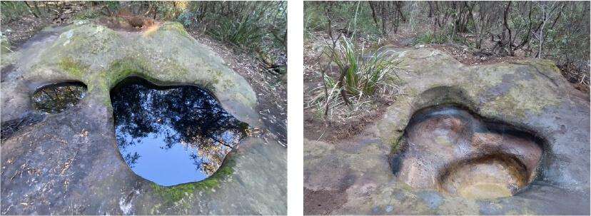 Freshwater Rock Pools in Kelly's Bush, Hunters Hill.